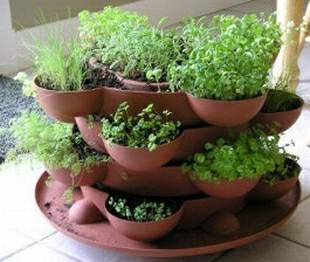 Herb Garden In Stacked Containers